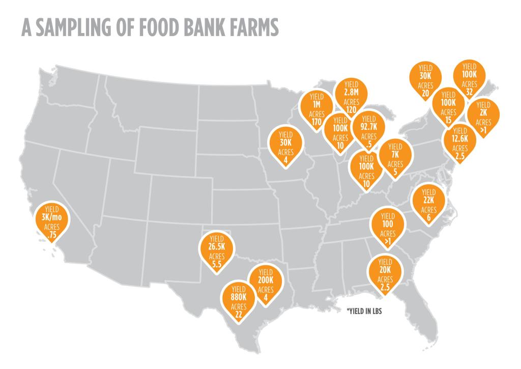 Image: Food bank farms