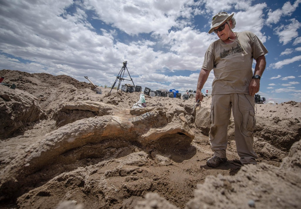 Image: Paleontologist Gary Morgan stands over a the fossil of a stegomastodon skull discovered in a remote area of Elephant Butte State Park, N.M., on June 12.