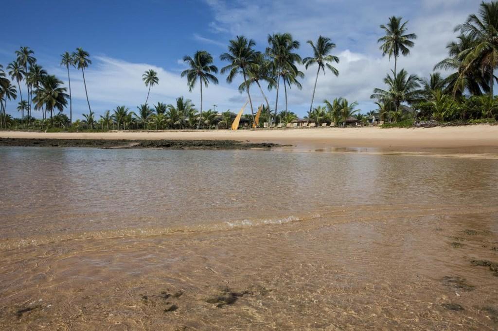 Image: Marau Peninsula, town of Barra Grande, state of Bahia in Brazil.