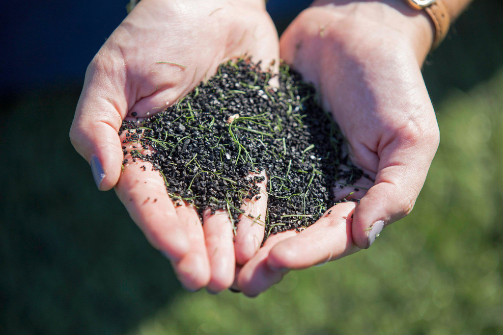 Image: A soccer player holds a pile of crumb rubber infill, collected from an artificial turf field