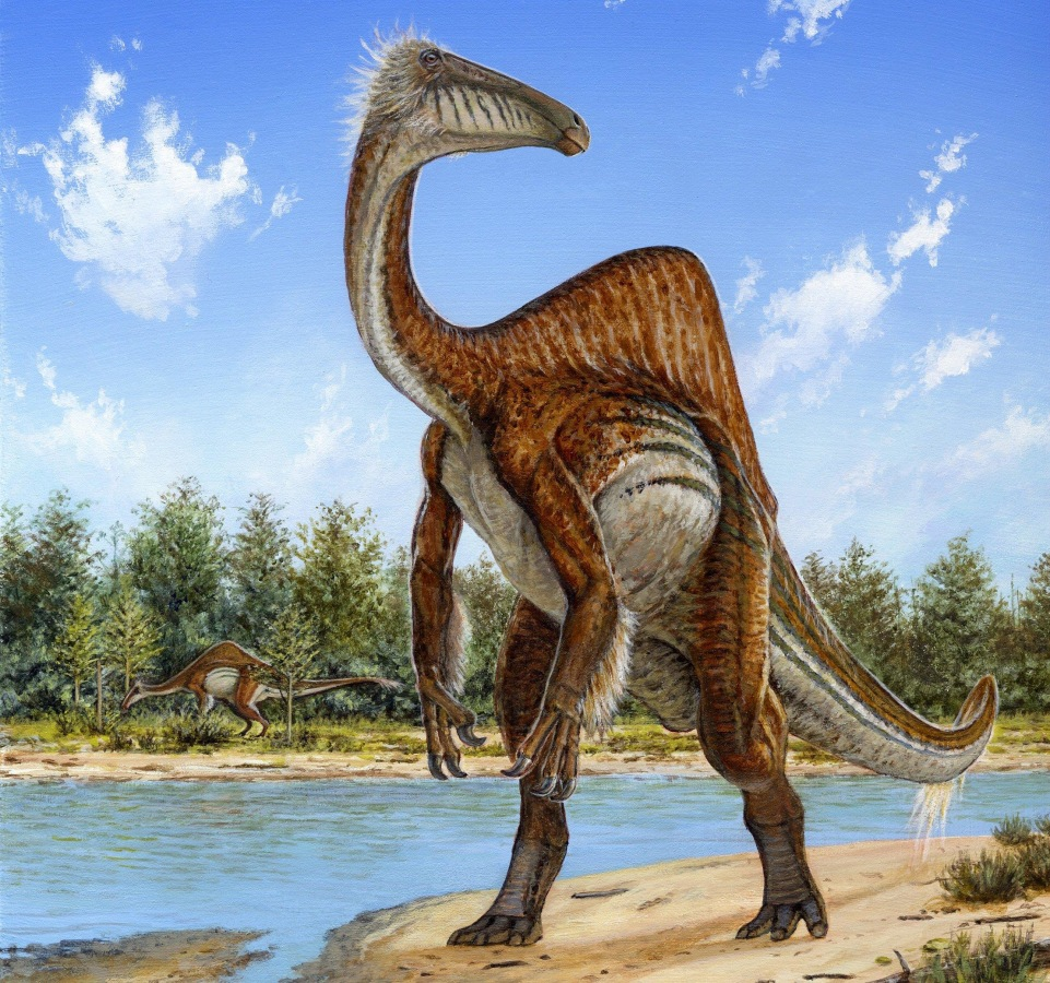 Image: Deinocheirus mirificus, the largest known member of a group of ostrich-like dinosaurs
