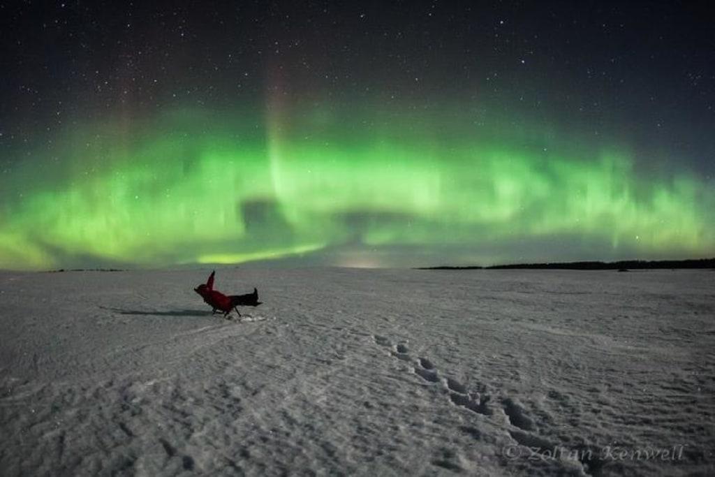 Image: Watching the aurora
