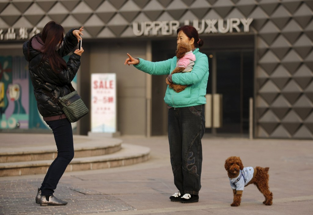 Image: File photo of a woman taking a picture with her pet dog at a shopping mall in Beijing