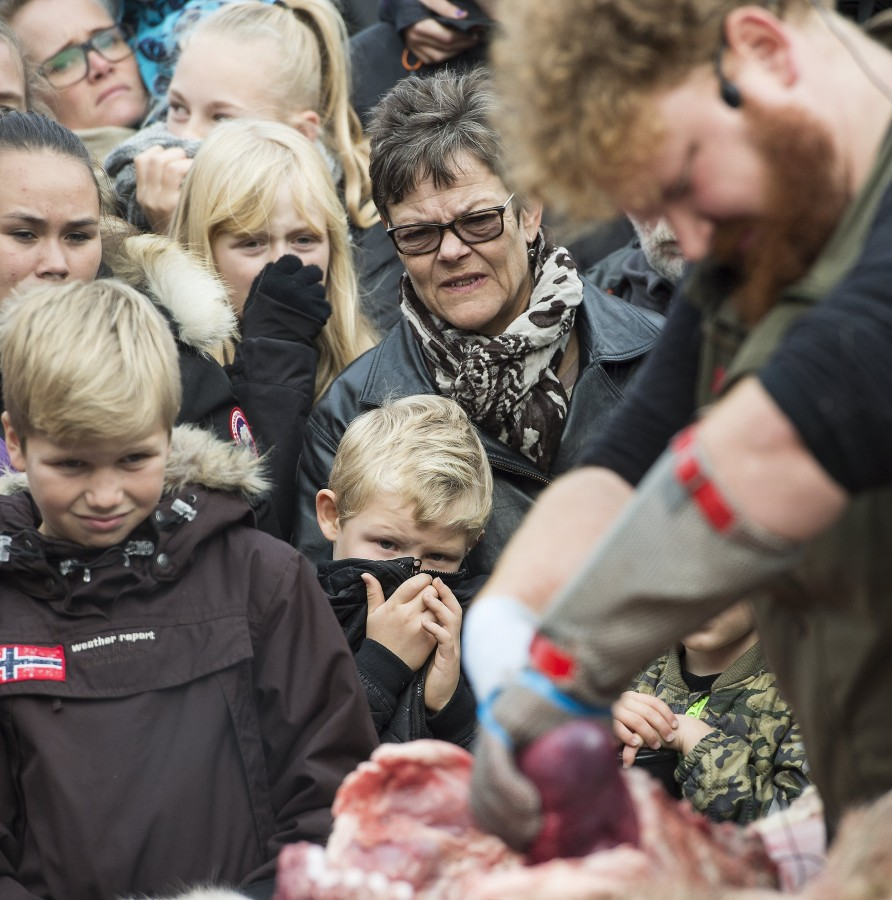 Image: People watch as a lion is dissected at Odense Zoo in Odense, Denmark