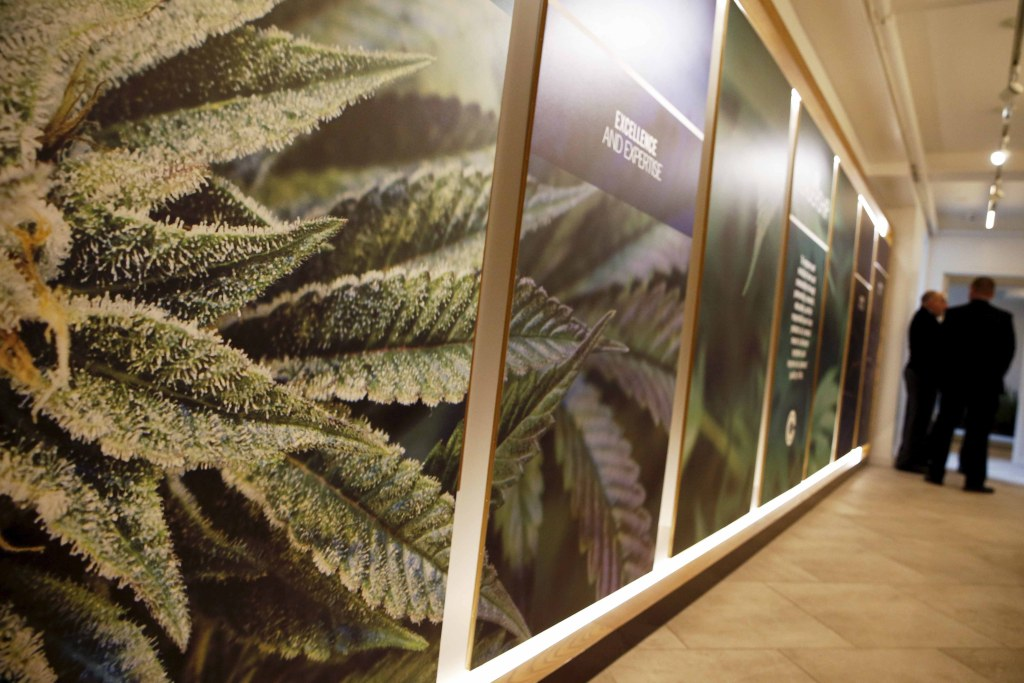 Image: Medical marijuana dispensary