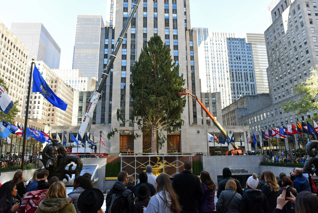 Christmas On The Way: Rockefeller Center Tree Goes Up