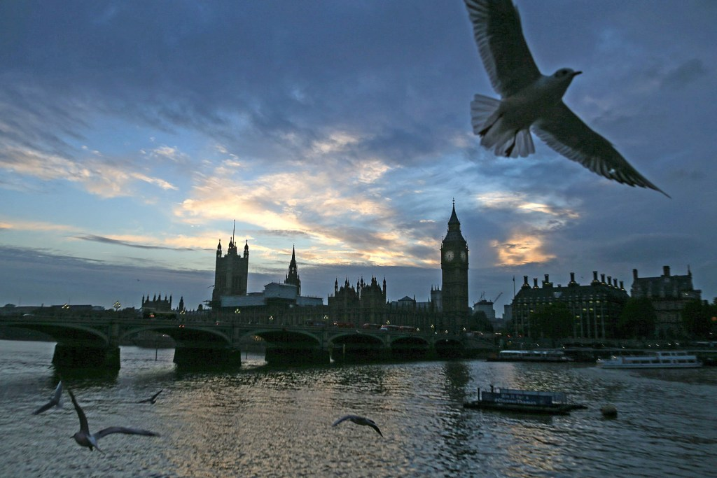 Image: Gulls fly over the River Thames