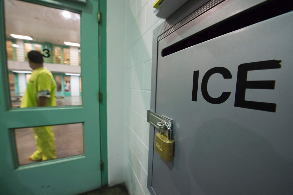 Image: Immigration detainees arrested by ICE