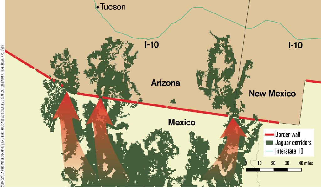 Image: Existing border wall and jaguar movement corridors