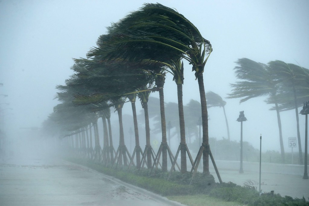 Image: Hurricane Irma Slams Into Florida