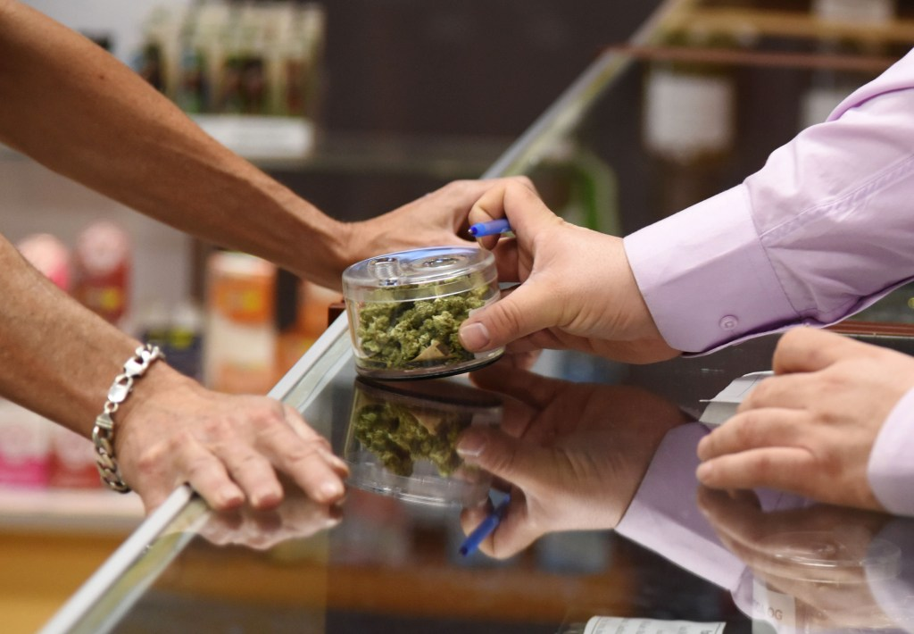 Image: A budtender shows cannabis buds to a customer at the Green Pearl Organics dispensary
