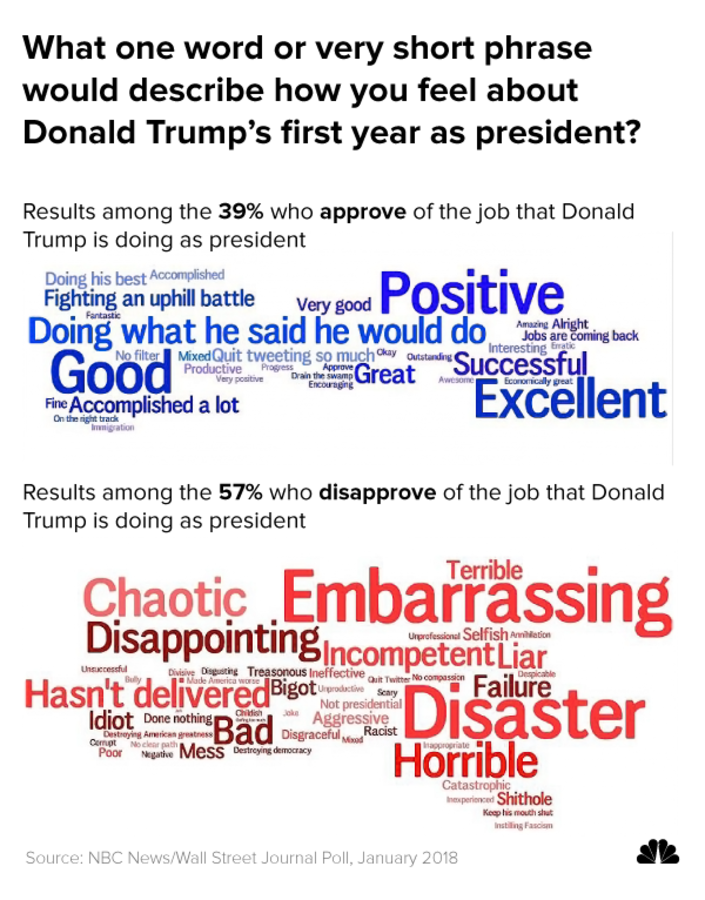 What one word or very short phrase would describe how you feel about Donald Trump's first year as president?