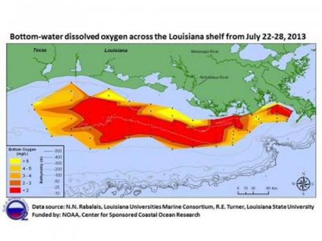 Gulf of Mexico dead zone is the size of Connecticut - NBC News Zone Map Gulf Of Mexico on zone map washington, zone map pacific, zone 9 map, zone map arkansas, ecosystems with map of mexico, zone map usa, zone map new england, zone map florida, zone map canada, zone map north america, zone map wyoming,