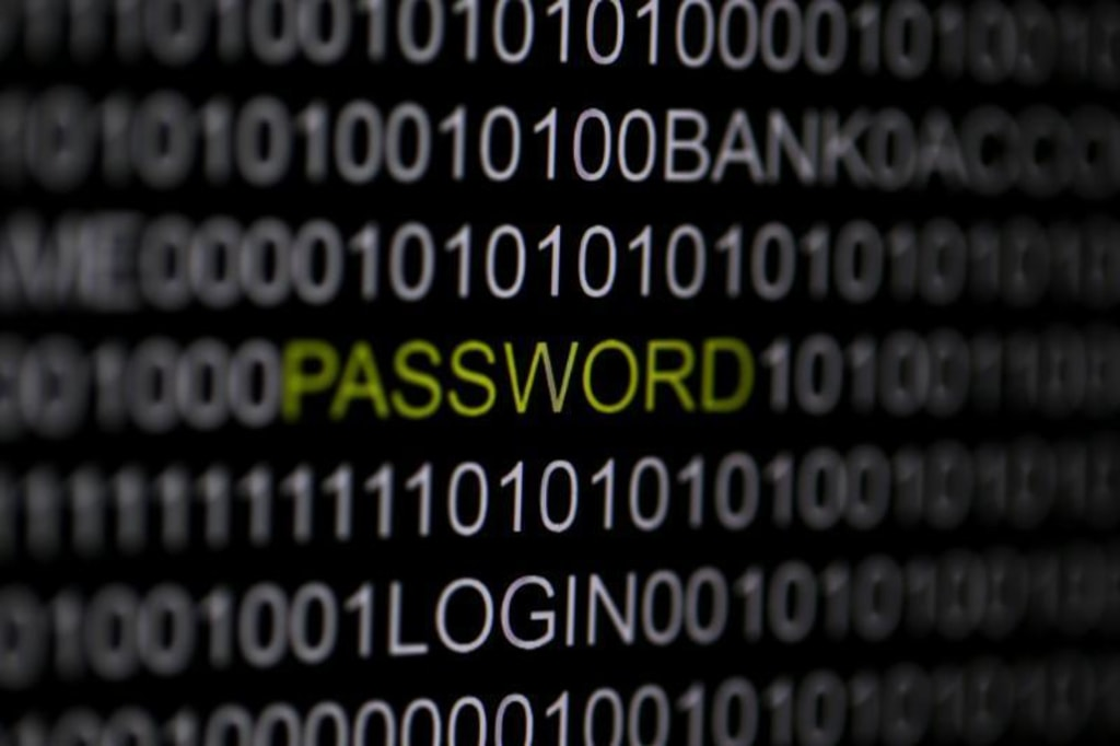 IMAGE: The word 'password' is pictured on a computer screen in this picture illustration taken in Berlin