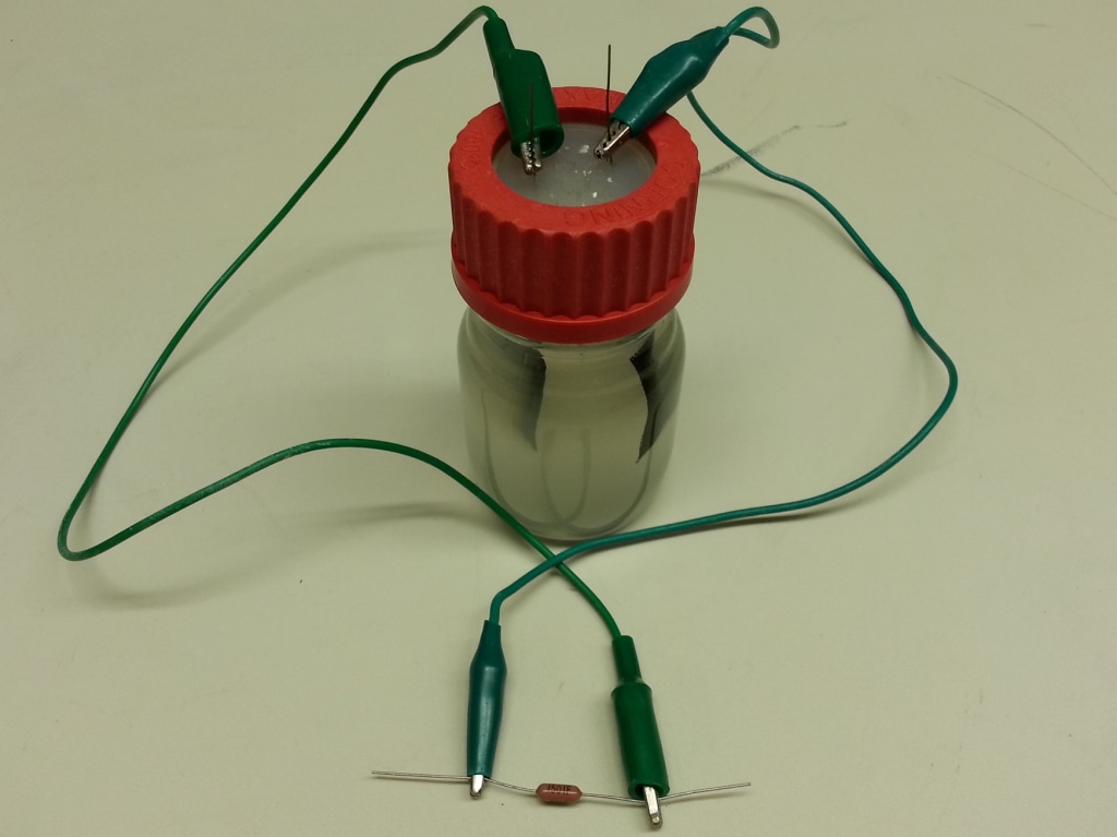 Image of microbial battery