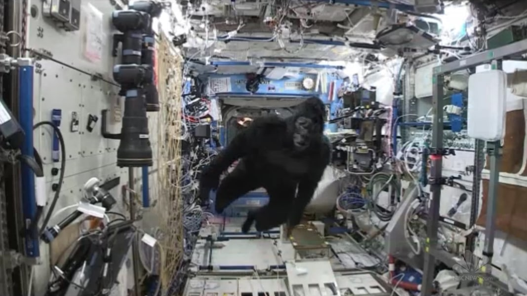 Gorilla Suit On The Space Station Twins Will Be Twins