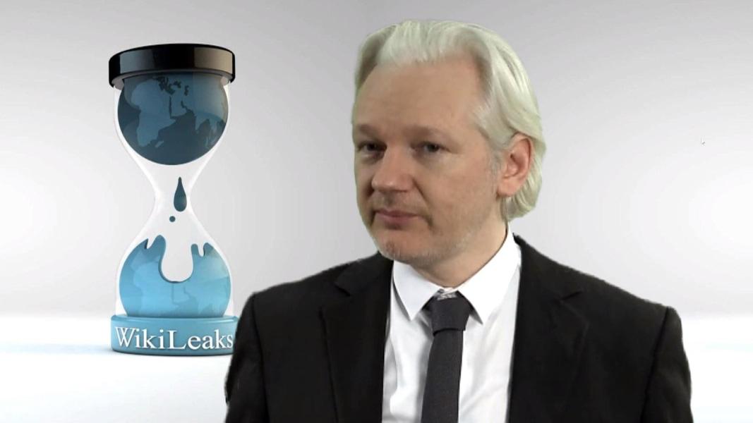 Image result for julian assange wikileaks