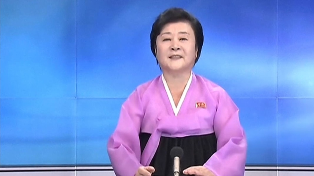 Image result for north korean state television news caster