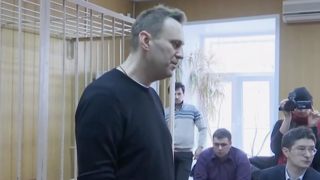 Russian opposition leader Alexei Navalny arrested on way to protest, wife says