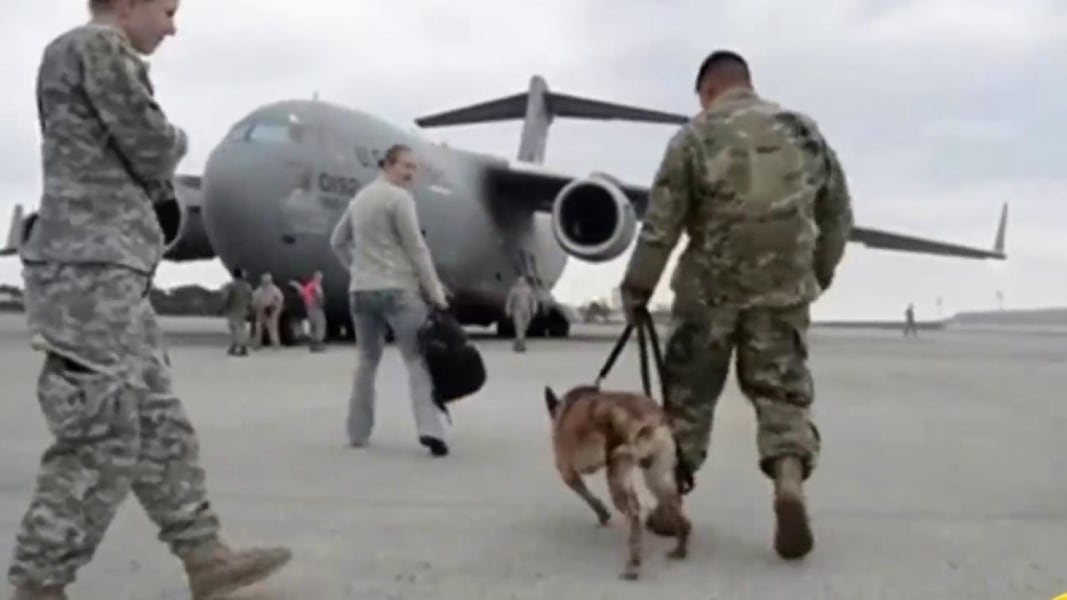 Military Dog And Veteran Have Heartwarming Reunion
