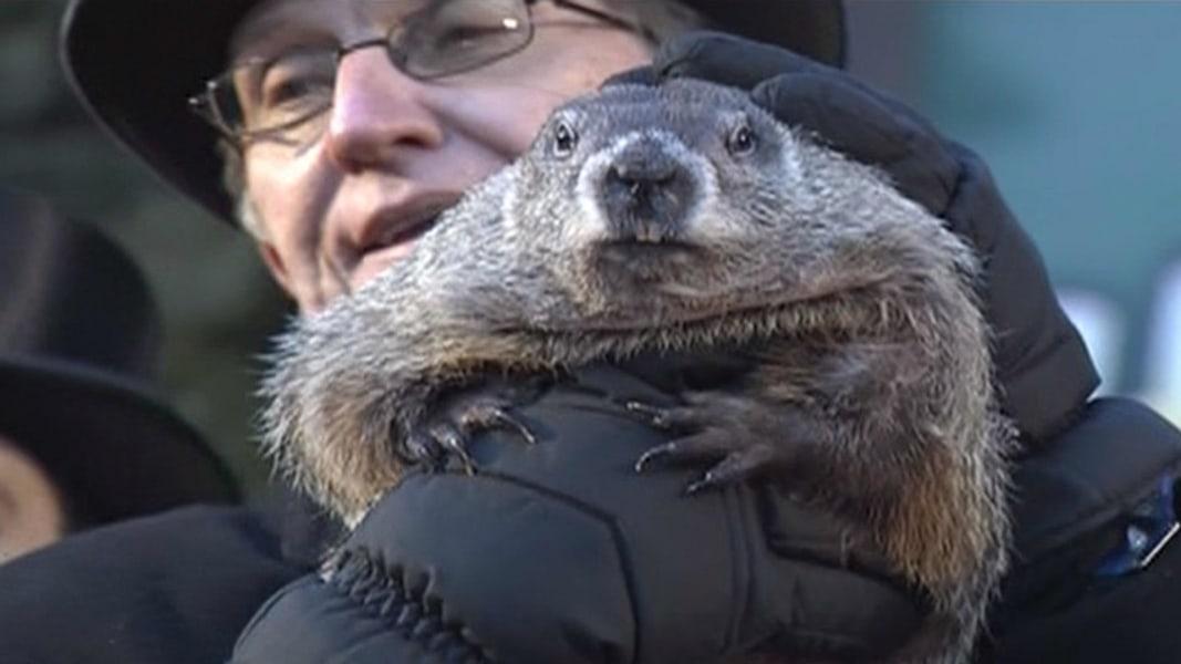 Groundhog Day: Punxsutawney Phil 'Predicts' Early Spring