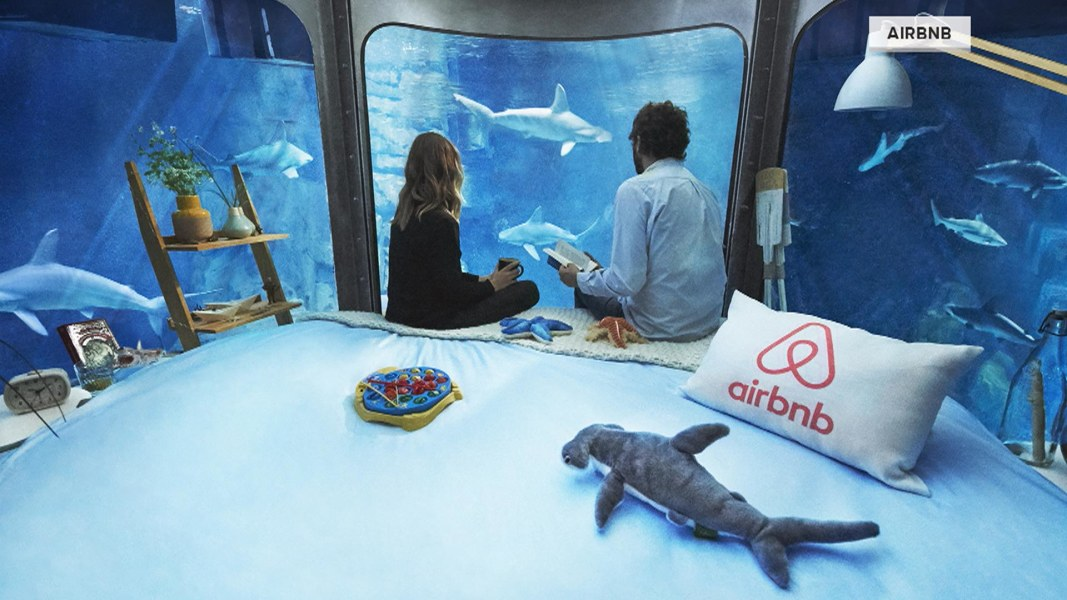 Sleep with the fishes er sharks in this unusual airbnb for Sleeping with the fishes