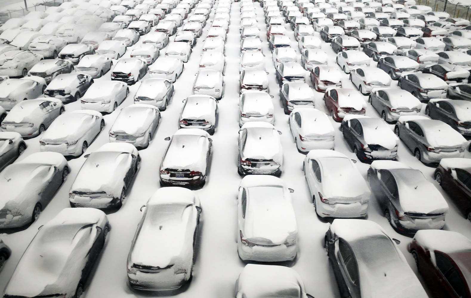 Chicago Blizzard  Cars Covered In Ice Pics