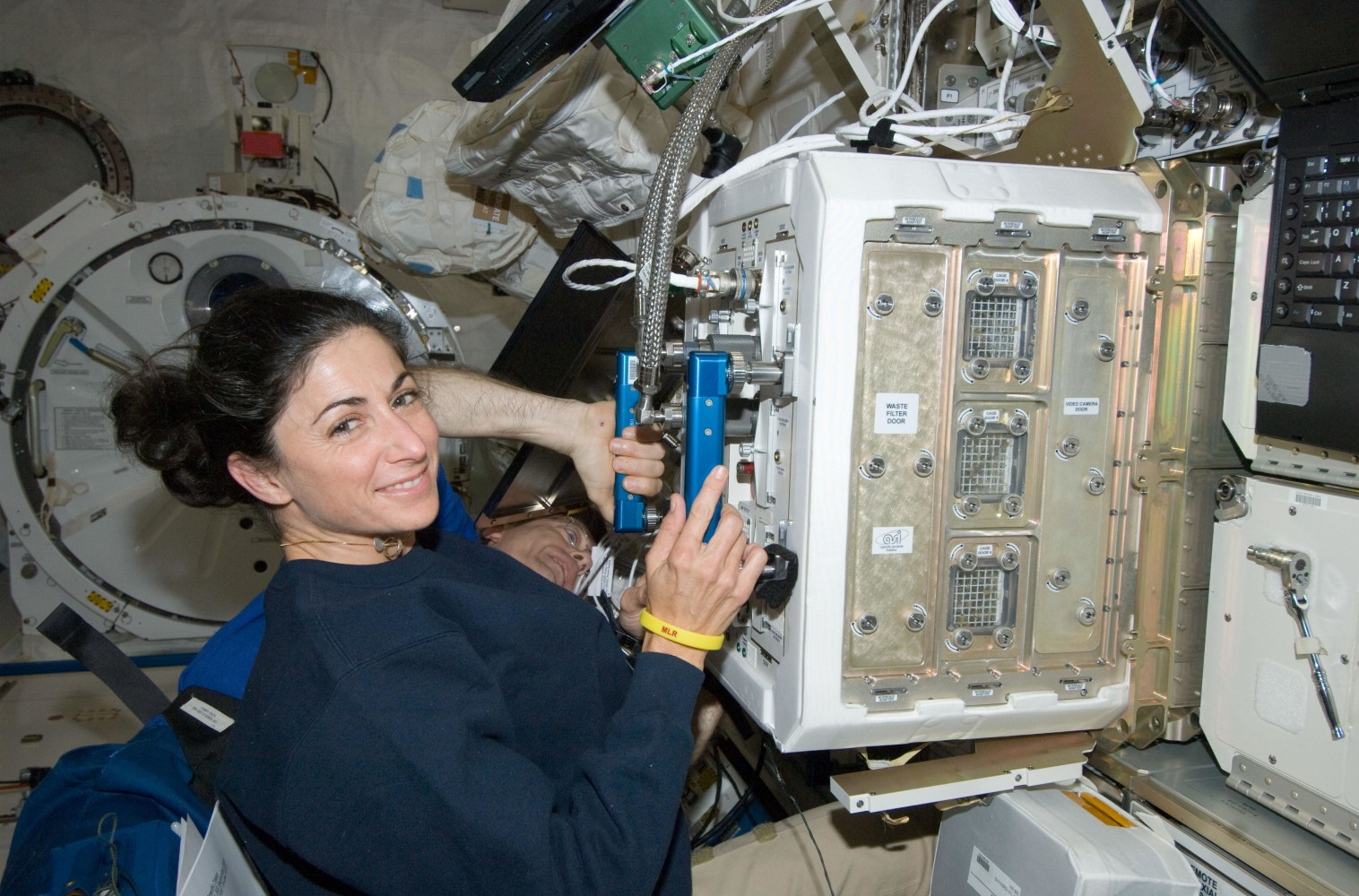 Astro Mouse Study Suggests Spaceflight Could Be Bad For