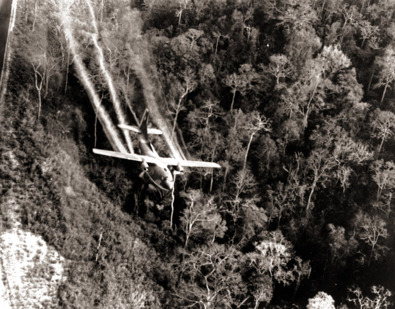 agent orange Learn more about monsanto's background with agent orange, an herbicide that was only produced for and used by the government.