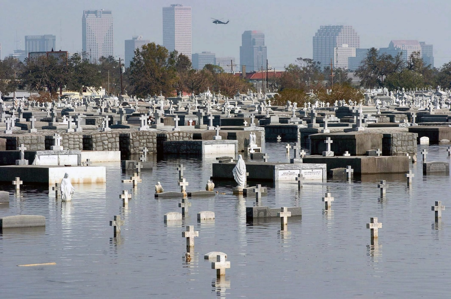 term papers on hurricane katrina Hurricane katrina in 2005 left a trail of great destruction lives were lost and property was destroyed this research paper will discuss its effects.