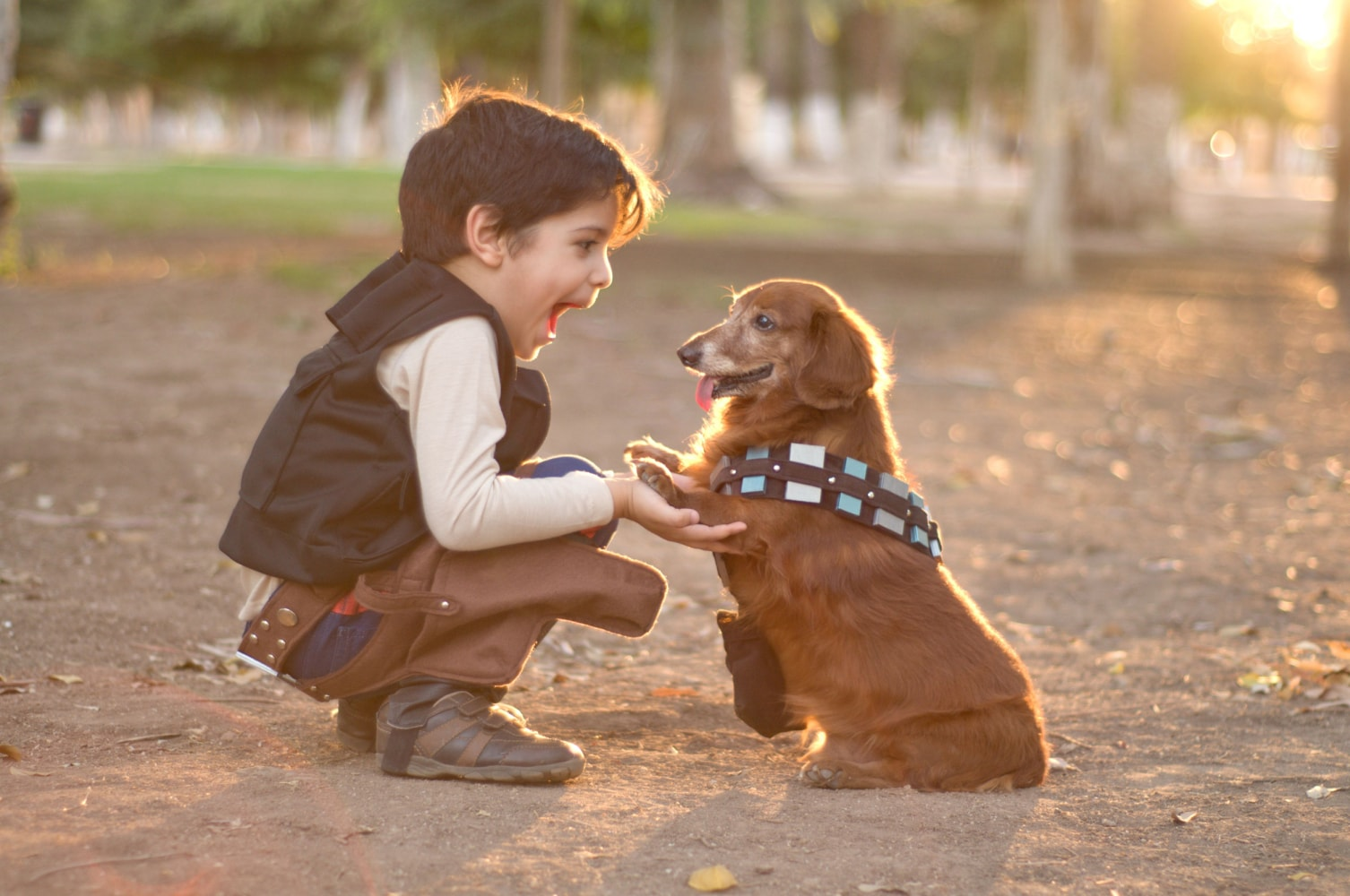 Image result for children with pets