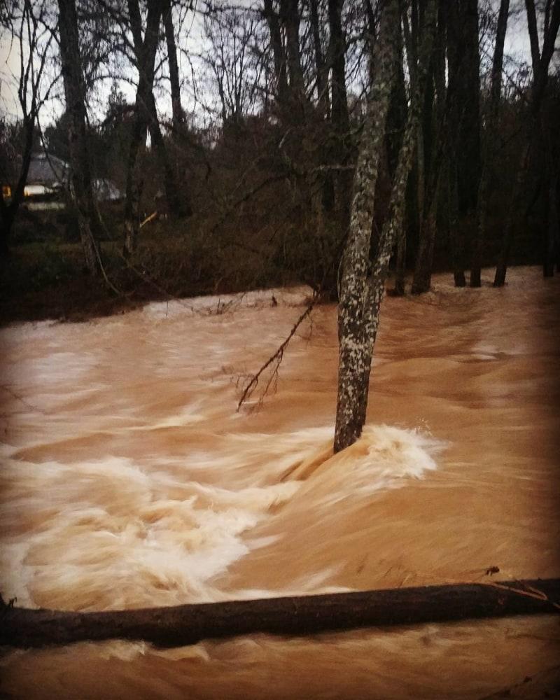 news weather heavy rains soak pacific northwest kill portland woman