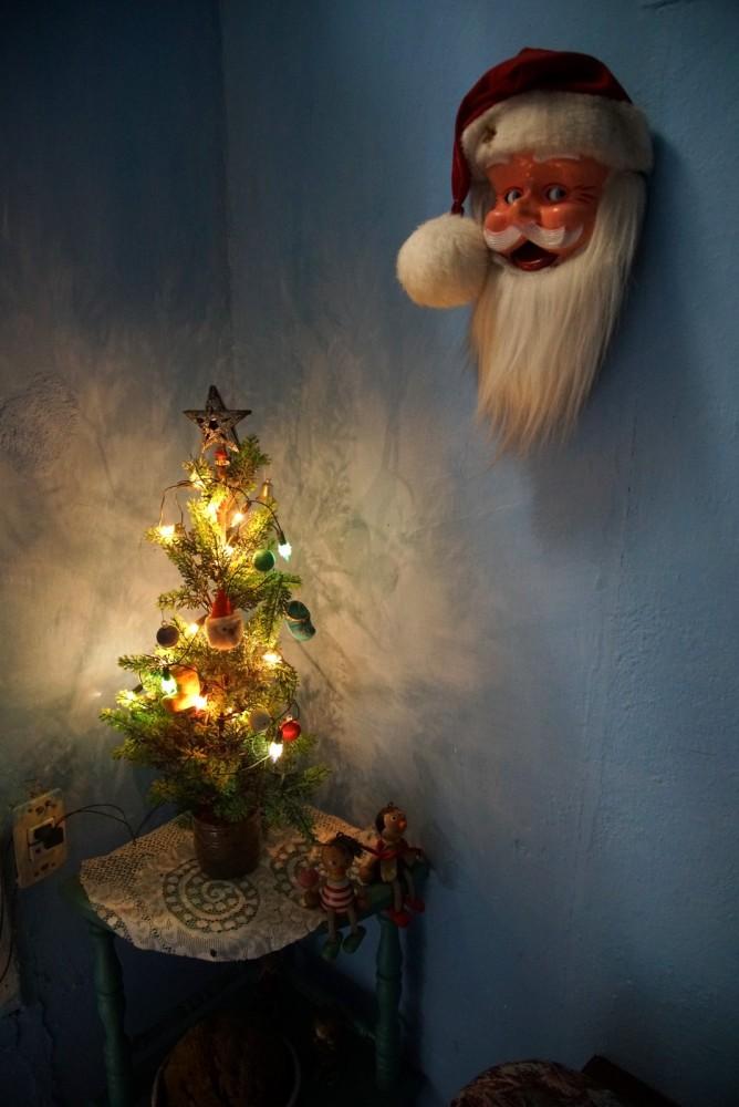 Used Christmas Trees