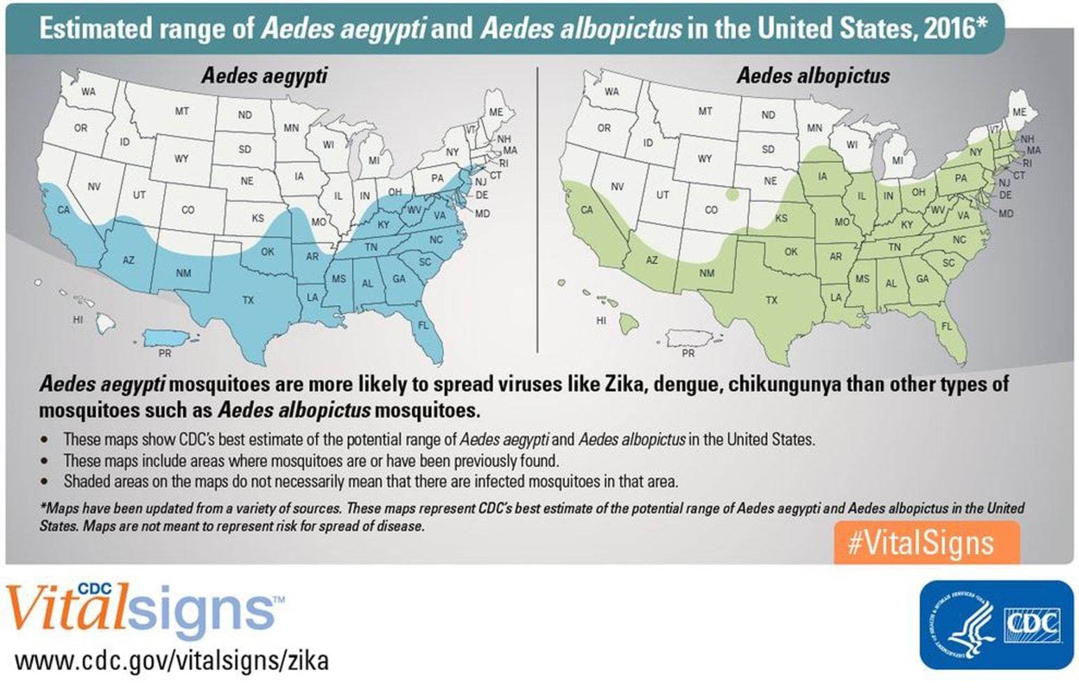 Zika Found In Common Backyard Asian Tiger Mosquito NBC News - Zika virus map usa states