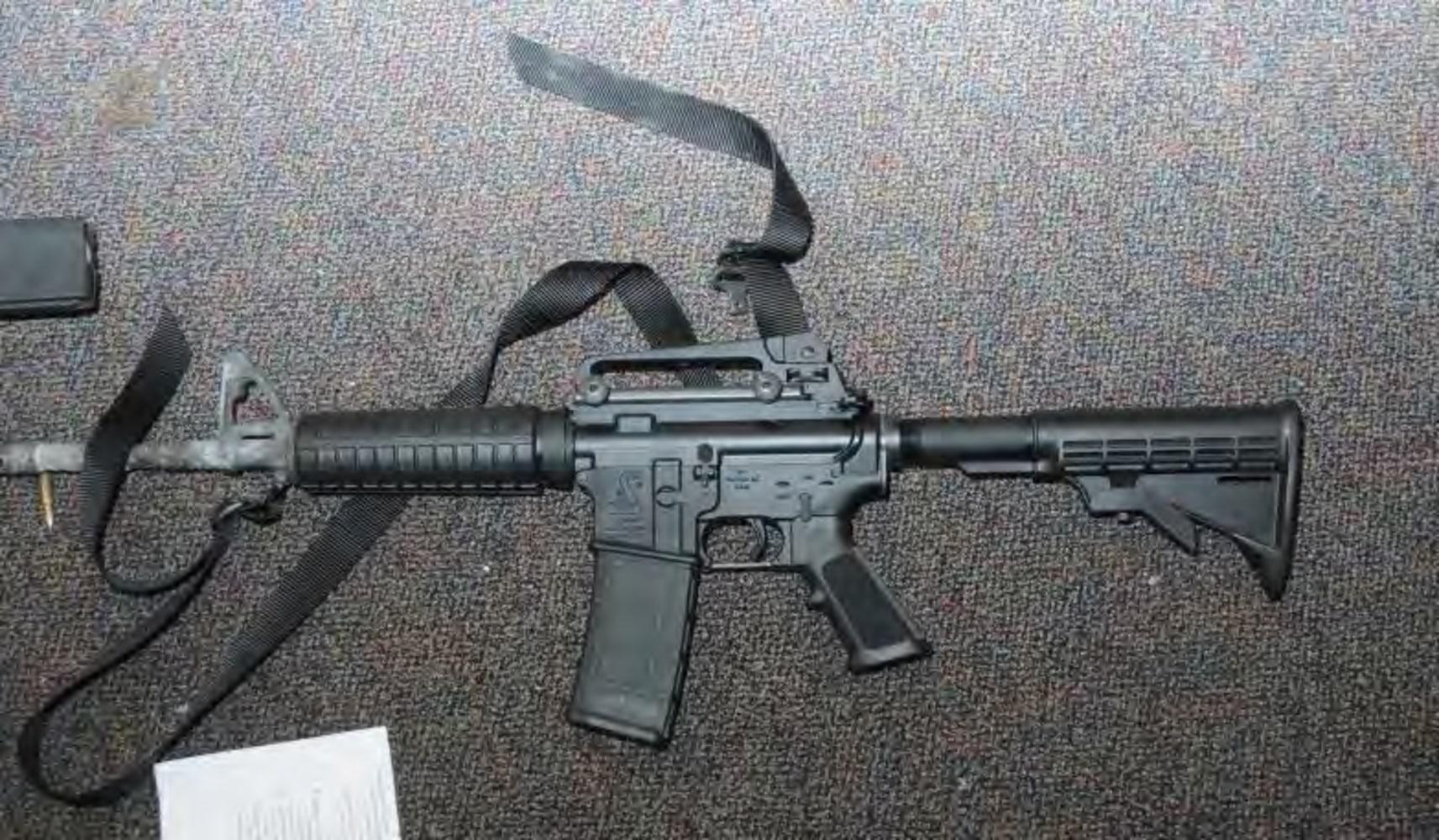 IMAGE Bushmaster rifle