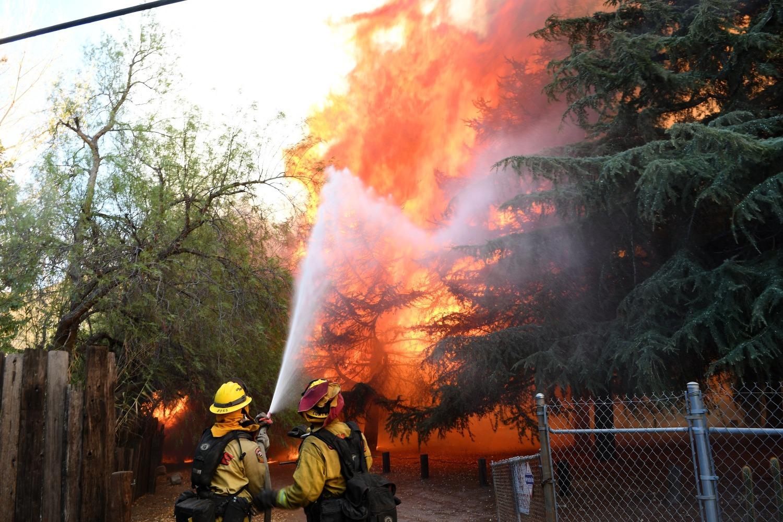 Image bluecut fire