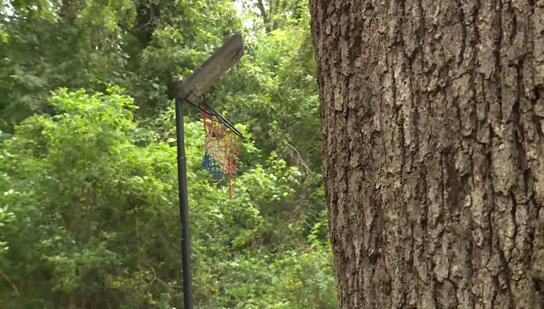 reports of creepy clowns in woods spooking residents of greenville