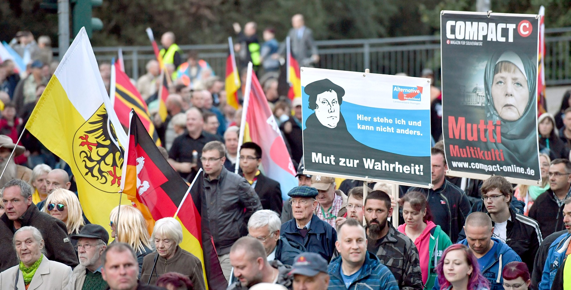 Germanys Populist Right-Wing AfD Party Draws Comparison