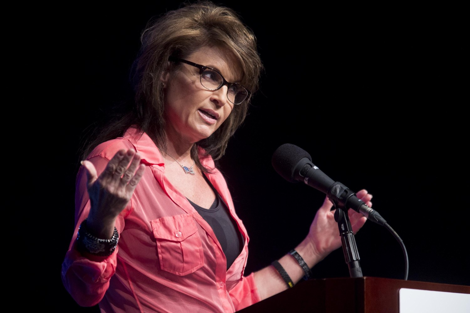 Sarah Palin Expresses Interest In Trump Administration Job