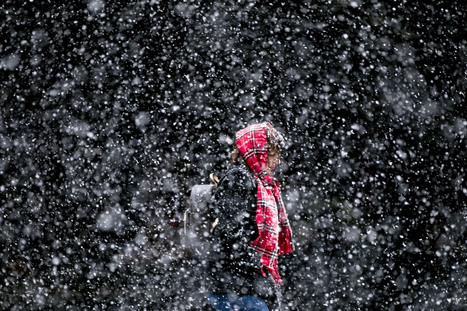 Northeast Braces for Potentially Historic March Blizzard ...