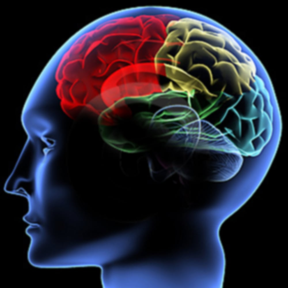 How Our Brains Work To Erase Bad Memories Nbc News