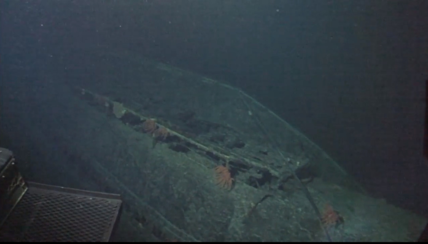 There's nothing midget subs sunk wwll that interrupt