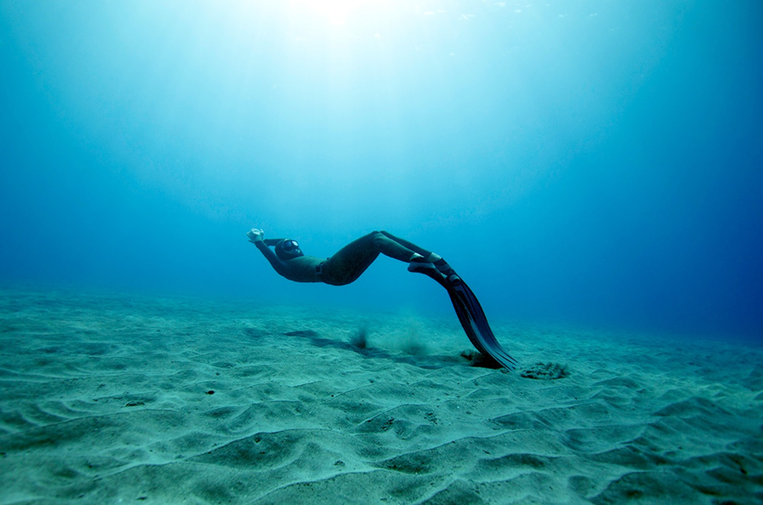 On One Deep Breath Divers Capture Beauty Of Ocean's Depths