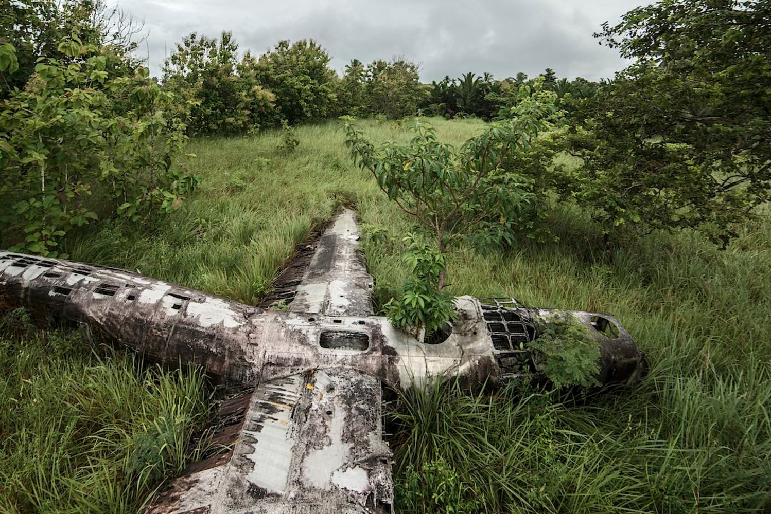 Eerie Plane Wrecks Contain Forgotten Stories Of Survival