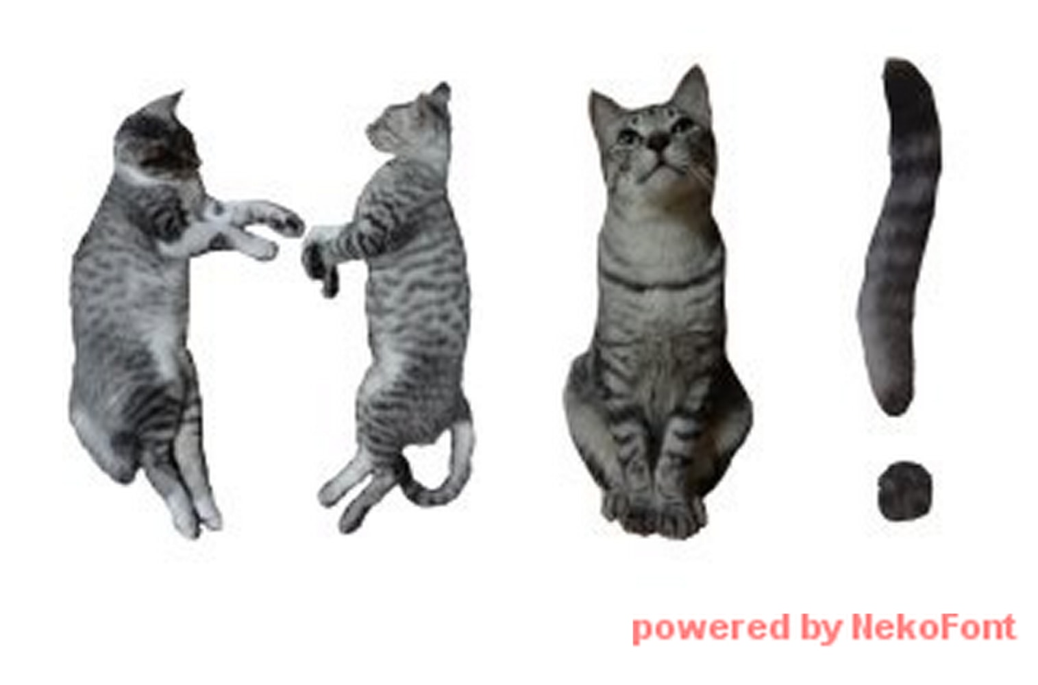 There is now a fontmade entirely of cats