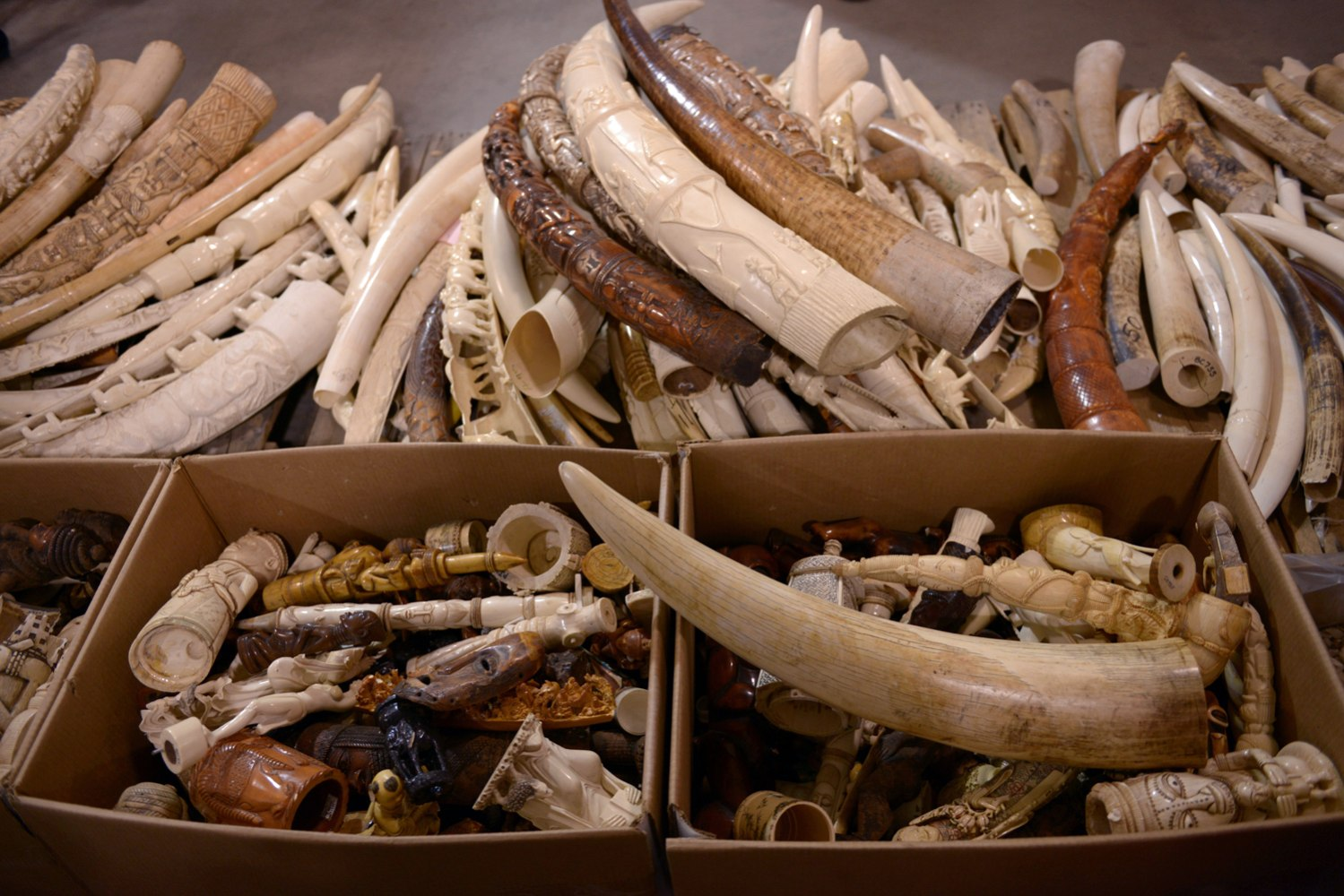 US crushes 6 tons of illegal ivory to send message to ...  US crushes 6 to...