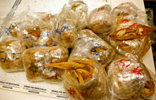 Image: Traveler with Hundreds of Illegal Tamales Caught at LAX