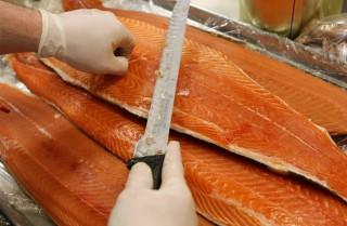 Image: Salmon