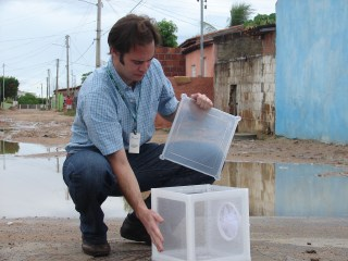 Image: Dr. Andrew McKemey releases Oxitec male mosquitoes in Brazil