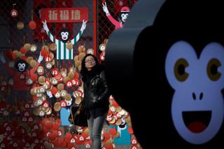 Image: Year of Monkey 1